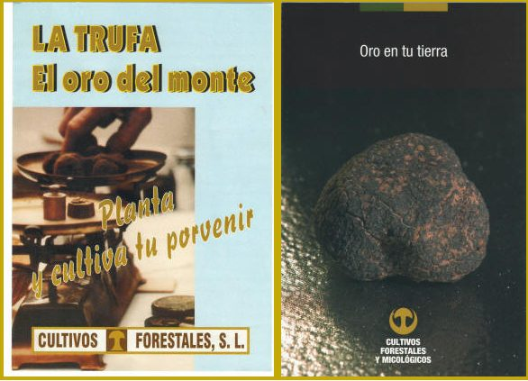 CULTIVOS FORESTALES Y MICOLÓGICOS. MANY YEARS OF EXPERIENCE IN TRUFFLE MYCORRHIZATION