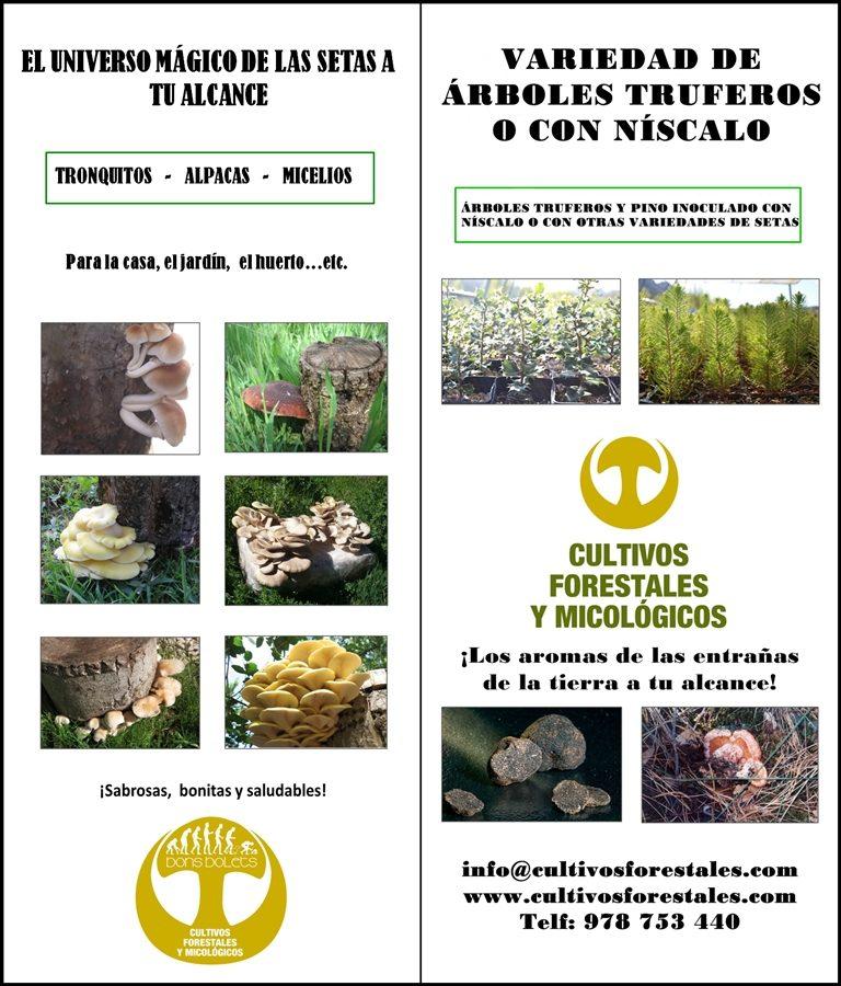 Folleto informativo de Cultivos Forestales