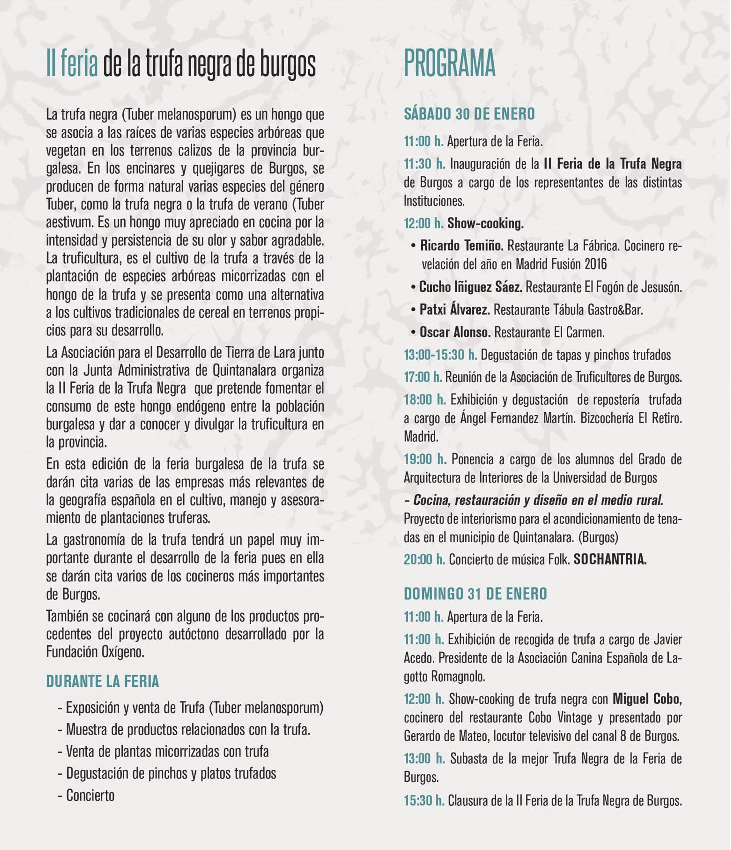 II FERIA DE LA TRUFA NEGRA EN BURGOS 2