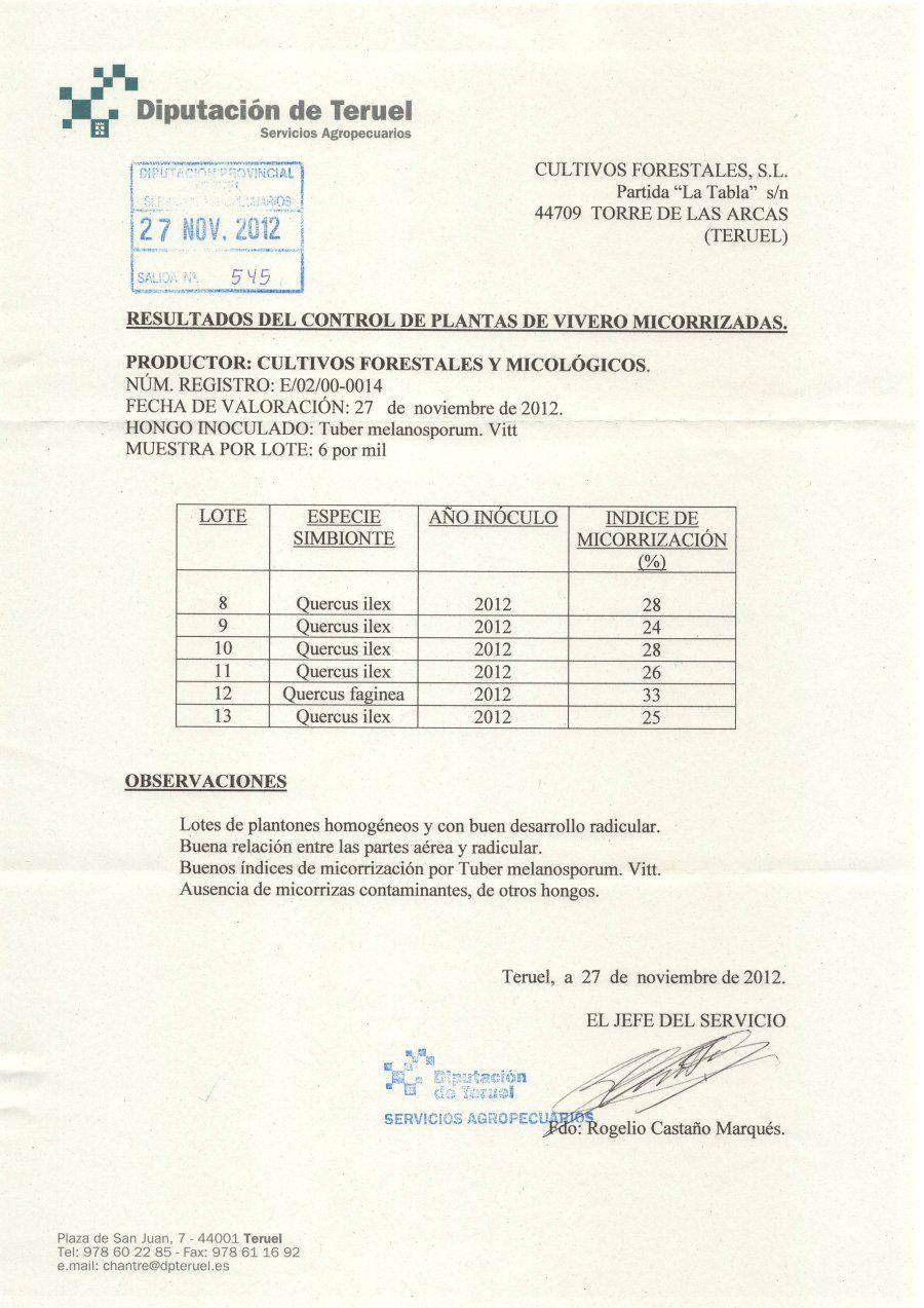 Resultados del control de plantas de vivero micorrizadas.