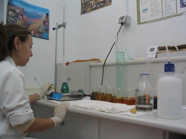 El estudio físico químico del suelo es muy importante para el cultivo de la trufa.