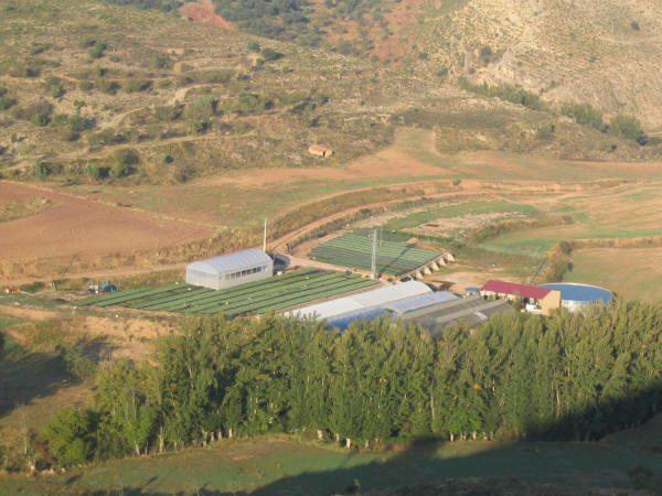 Instalaciones actuales de Cultivos Forestales.