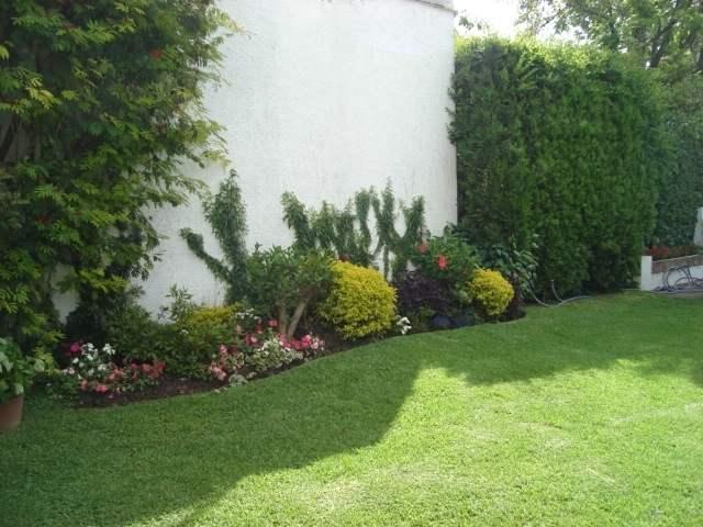 Cualquier rincón de nuestro jardín es válido para plantar un setal.
