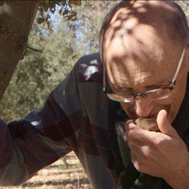 Cultivos forestales nuestra misión