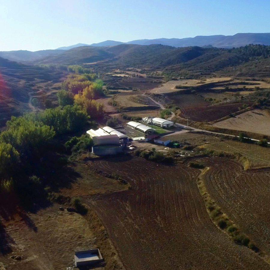 Cultivos forestales foto aérea de las instalaciones